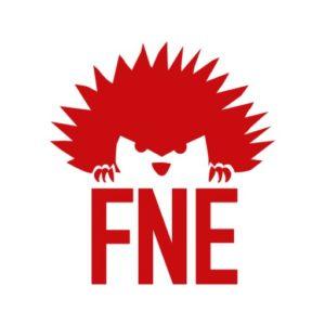 animations avec la FNE et le centre social de parilly à vénissieux